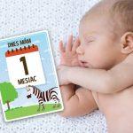 Milníkové kartičky pro první rok děťátka (CZ)